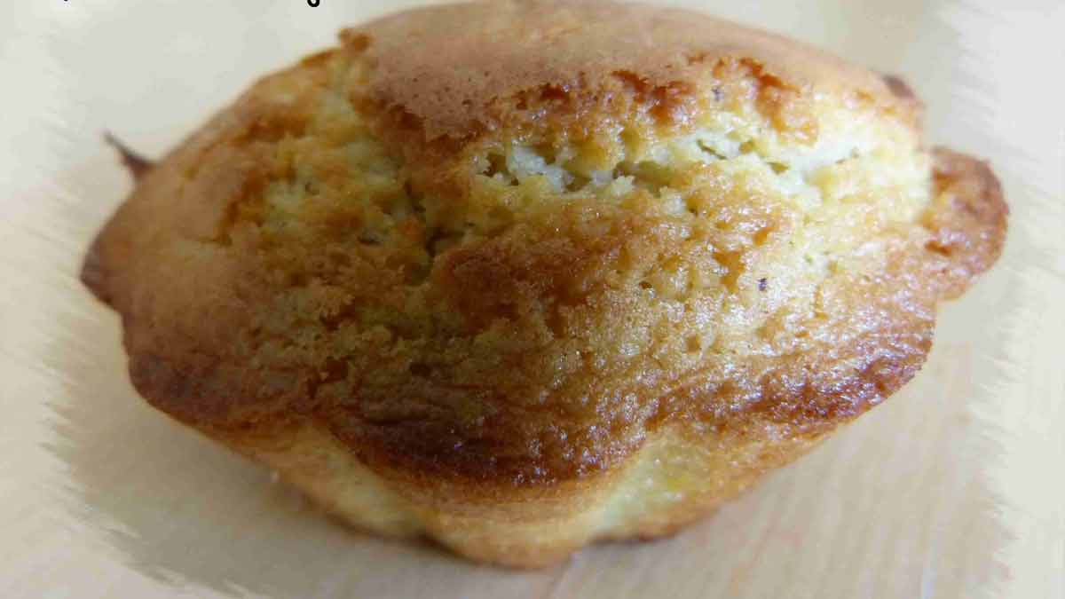 Adorables muffins moelleux aux amandes et au chocolat